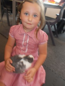 Thank you Rosie for bringing in your new rabbit to meet us. He is very cute.