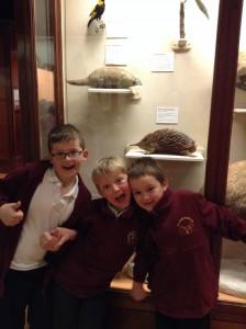 bristol museum 025