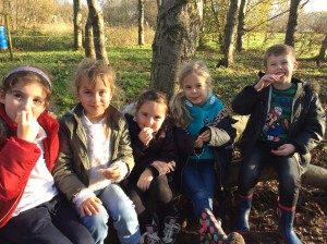 Forest School Group 2 December 2015 028