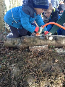Forest School Group 3 February 2016 018