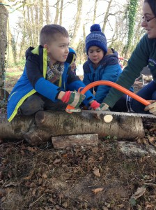 Forest School Group 3 February 2016 020