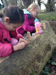 Forest School Group 3 February 2016 032
