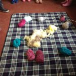 FEBRUARY 27th Forest school weaving 019