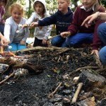 forest-school-group-1-last-week-fire-october-1oth-16-023