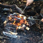 forest-school-group-2-last-week-fire-nov-2016-002