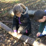 forest-school-group-2-last-week-fire-nov-2016-015