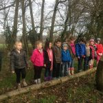 Forest School January 23rd 2017 OWL and SENSES 066