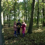 forest-school-group-2-week-2-november-2016-017