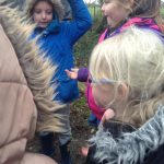 GROUP 4 FOREST SCHOOL FEB 6TH 2017 029