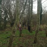 GROUP 4 FOREST SCHOOL FEB 6TH 2017 036